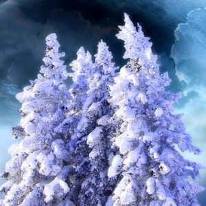 Free mobile wallpapers christmas tagged fantasy zoxee winter fantasy voltagebd Images