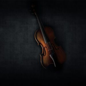 Violin in the dark